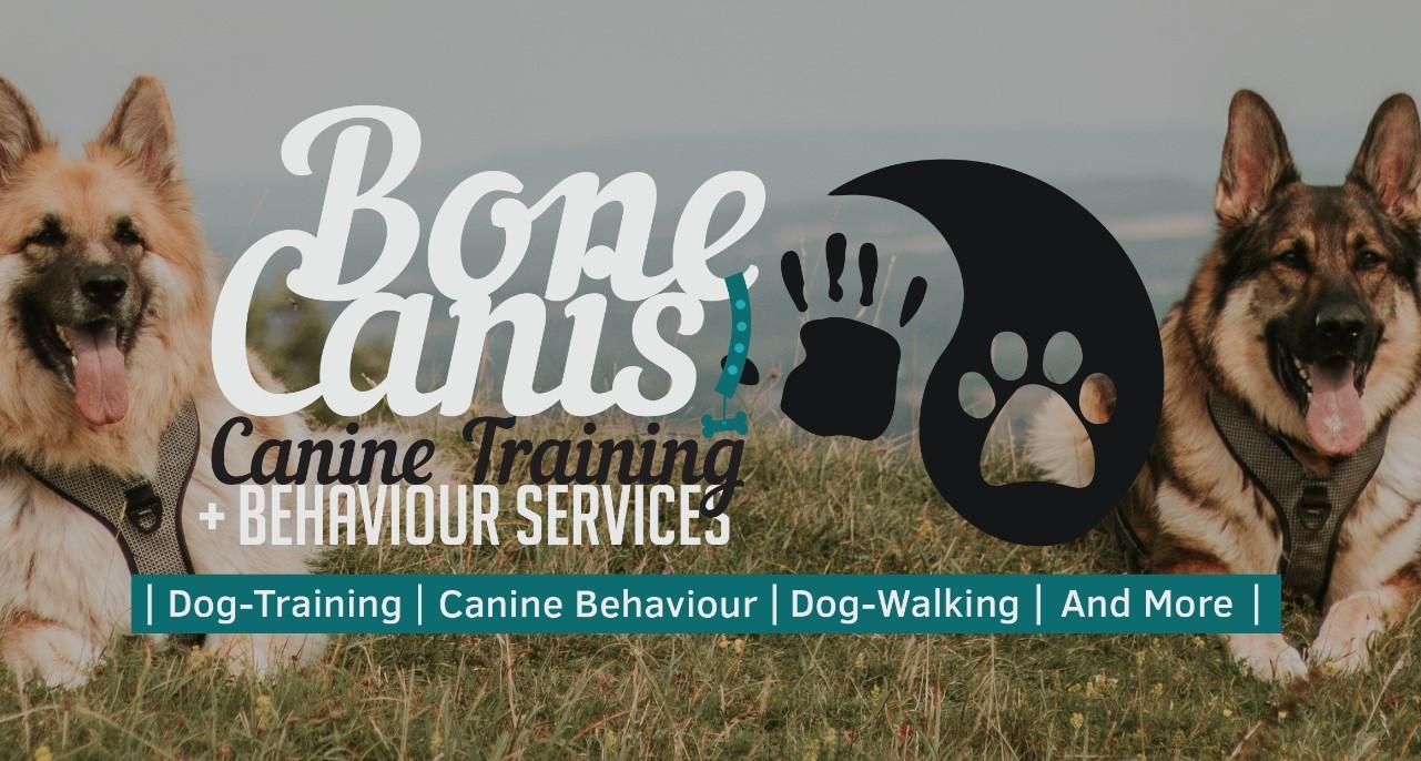 20 06 02 bone canis