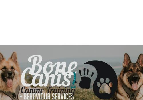 Bone Canis